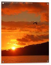 Sunset Glider, Acrylic Print