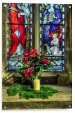 Christmas Poinsettia, Acrylic Print