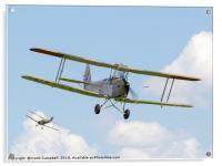 De Havilland DH.82B Queen Bee, Acrylic Print