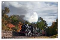 Double-header in lovely light at Dowles Junction, Acrylic Print