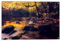 On Golden Pond, Acrylic Print