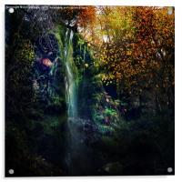Fairies Fall, Acrylic Print