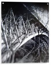 Panther Hollow Bridge, Pittsburgh, Pennsylvania, Acrylic Print