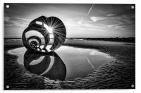 Mary's Shell Black and White, Acrylic Print