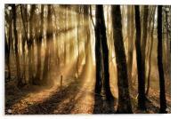 Misty rays, Acrylic Print