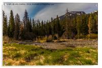 Yellowstone Landscape, Acrylic Print