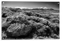 Garn Gilfach from the Wales Coast Path, Acrylic Print