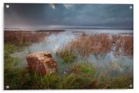 The Loughor estuary, Acrylic Print