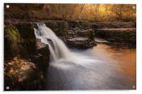 The Afon Nedd, Acrylic Print