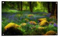 Woodland British Bluebells, Acrylic Print