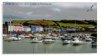 Aberaeron Harbour (Marina section), Acrylic Print