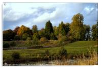 Autumn at the Clyde Valley , Acrylic Print