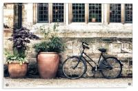 Bicycle and Pots, Acrylic Print