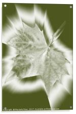 shades of green, Acrylic Print