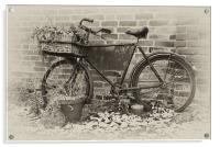 The Old Bike, Acrylic Print