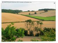 Chiltern View from A41 Bypass, Acrylic Print
