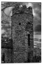 East Wall Tower, Acrylic Print