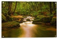 Golitha Falls. , Acrylic Print