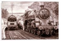 Steam and Steam, Acrylic Print