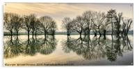 Reflections in the Flood, Acrylic Print