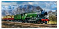 Steaming to the North, Acrylic Print