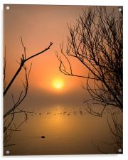 Cosmeston Lake with mist, Acrylic Print