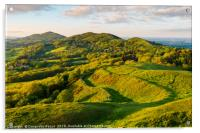 The Malvern hills at the evening golden hour, Acrylic Print