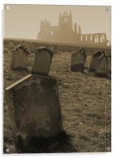 Inspiration for Dracula, Acrylic Print