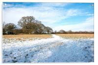 Snow covered field, Acrylic Print