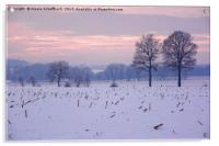 Winter Evening, Acrylic Print
