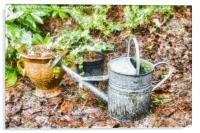 Garden Still Life, Acrylic Print