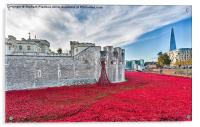 Poppies At The Tower, Acrylic Print
