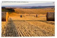Straw Bales at Dawn, Acrylic Print