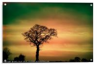 Tree Silhouette against the sky, Acrylic Print