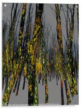 Northside Texture, Acrylic Print