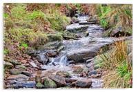 The stream, Acrylic Print