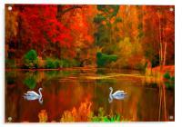 swan lake , Acrylic Print