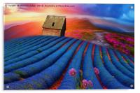 lavender-field Beauty