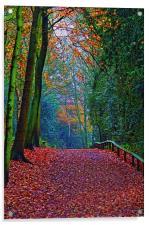 Yesterdays Walk………….., Acrylic Print