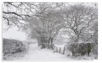 English country lane in the snow, Acrylic Print