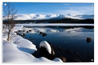Winter Views at Aviemore, Acrylic Print