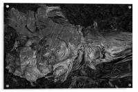 The Mystic, Acrylic Print