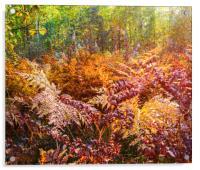 Autumn fern, Acrylic Print