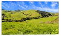 Green Meadow, Jalama Road CA, Acrylic Print