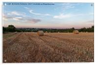Late Summer sunset, Acrylic Print