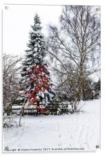 Winter wonderland, Acrylic Print
