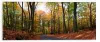 Autumn, Acrylic Print