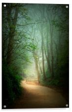 Mysterious Path , Acrylic Print