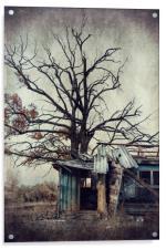 Abandoned house, Acrylic Print