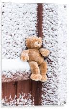 Teddy Bear, Acrylic Print